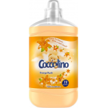 Coccolino Orange Rush aviváž 1,85l