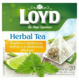 Loyd pyramida Herbal Tea Kopřiva s citronem 20 x 1,9g